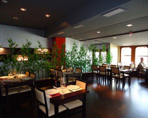Foto-interior-tatami